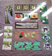 IBS4 Quilt: Jane P, USA